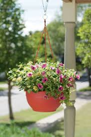 How Do Self Watering Planters Work Hanging Baskets For Plants And Flowers Self Watering Gardeners Com