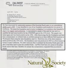 Society Letter Before Did Monsanto Plant Gmos Before Usda Approval Society
