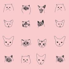 wallpaper cat illustration cat wallpaper by baines and fricker pretty dandy