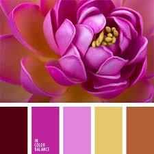 Colors That Match With Purple 1332 Best Colour Combinations Images On Pinterest Colors Colour
