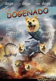 Funny Doge Memes - funny shiba inu meme yahoo image search results funny