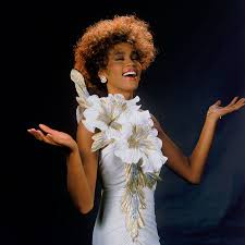 Vanity Drug Use A Whitney Houston Investigation The Long Sad Road To Her Beverly