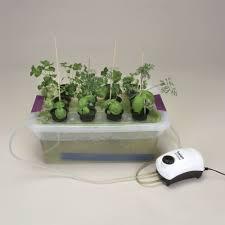 visual desktop hydroponics kit carolina com