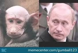 Baboon Meme - baboon i am your father by recyclebin meme center