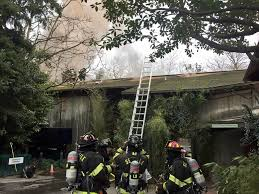 Zoo Lights Woodland Park 2 Firefighters Hurt Animals Evacuated After Blaze At Seattle U0027s