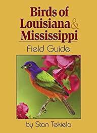 Nc Backyard Birds Southern Birds Backyard Guide Watching Feeding Landscaping