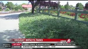 san jose considers removing some grass from city parks kron4