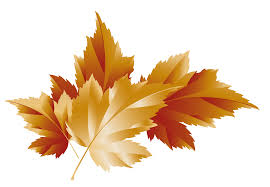 autumn leaves clipart transparent background clipartxtras