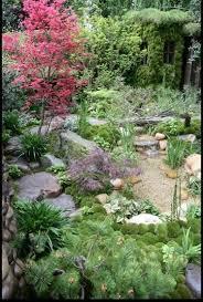 60 best chelsea garden show images on pinterest chelsea flower