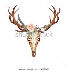 deer skull stock images royalty free images u0026 vectors shutterstock