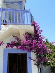 Beautiful Balcony Must See Balcony Gardens