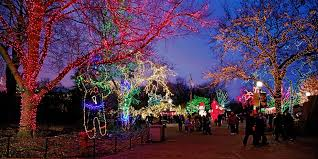 Detroit Zoo Wild Lights Explore Detroit Zoo W Acclaimed Holiday Lights Travelzoo