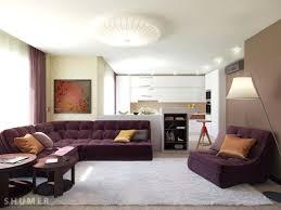 mq5 35 plum rich interior exterior paint sampleplum color wall