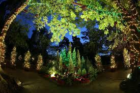 Botanical Gardens Christmas Lights by Christmas Light Up Performances At The Botanic Gardens Plus New