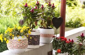 diy flower pots feng shui plants the tao of dana