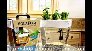 aquafarm mini aquaponics kit youtube