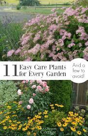 11687 best the garden charmers images on pinterest vegetable