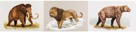 ice age animals bering land bridge national preserve