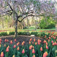 Botanical Garden Fort Wayne Fort Wayne Parks And Recreation Fort Wayne Parks And Recreation