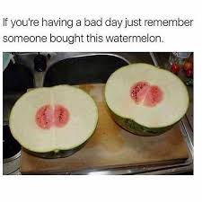 Watermelon Meme - memebase watermelon all your memes in our base funny memes