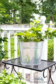 Herb Container Garden - midsummer container herb garden on sutton place