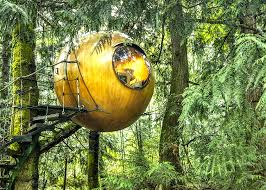 free spirit spheres hotel floating in a forest