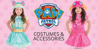 pink paw patrol party supplies paw patrol party party city