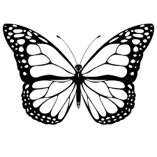 stencil design on paper flying monarch butterfly design