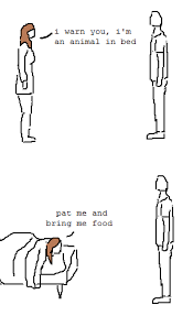 Animal In Bed Meme - i m an animal in bed imgur