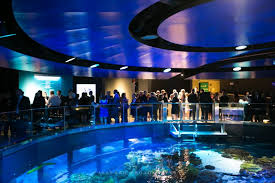 boston wedding venues weddings new aquarium