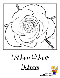 flowers coloring pages gullu