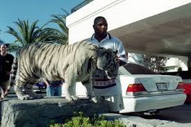 mayweather house floyd mayweather joins mike tyson club after posing with pet tiger