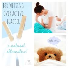 bed wetting solutions 24 best bedwetting solutions images on pinterest advice bed