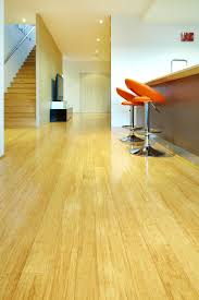 Strand Woven Bamboo Bamboo Flooring Green Alternatives To Timber Floors Stonewood