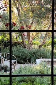 Drought Tolerant Backyard Ideas Drought Tolerant Garden Ideas Landscape Traditional With Twigs