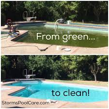 storm u0027s pool care u0026 repair 12 photos pool cleaners 2025