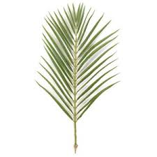 palms for palm sunday palm sunday decorations for your church