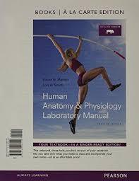 Human Anatomy And Physiology Books Human Anatomy And Physiology Marieb 11th Edition Lab Manual