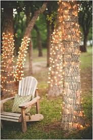 backyards beautiful tree trunks wrapped in string lights 77