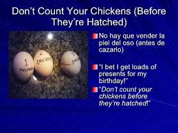 Count Your Chickens Before They Hatch Meaning Idioms And Proverbs