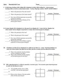 worksheets on monohybrid cross google search classroom