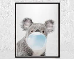 black white koala print australian animal koala bear