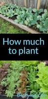 how much to plant organic fertilizer organic gardening and backyard