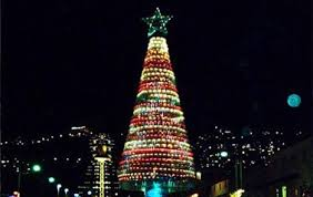 israeli artist makes christmas tree from 5 480 recycled plastic