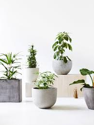 Design Flower Pots Plant Pots From Left To Right Styling U2013 Nat Turnbull Photo