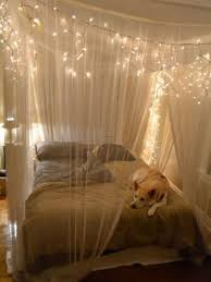 Mosquito Net Bed Canopy Make A Magical Bed Canopy With Lights Diy Projects For Everyone