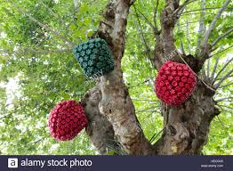 christmas decorations made out of plastic bottles hang on tree