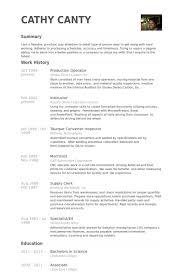 Resume Technical Skills Examples How To Write A Resume Senior Citizen Ga Homework Owaranai Cheap