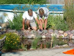 fish grove landscaping