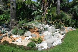 How To Build A Rock Garden Amazing Style With Palm Tree Artenzo